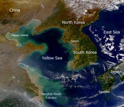Birds Korea - Habitat - Wetlands: Korea's most-threatened ...